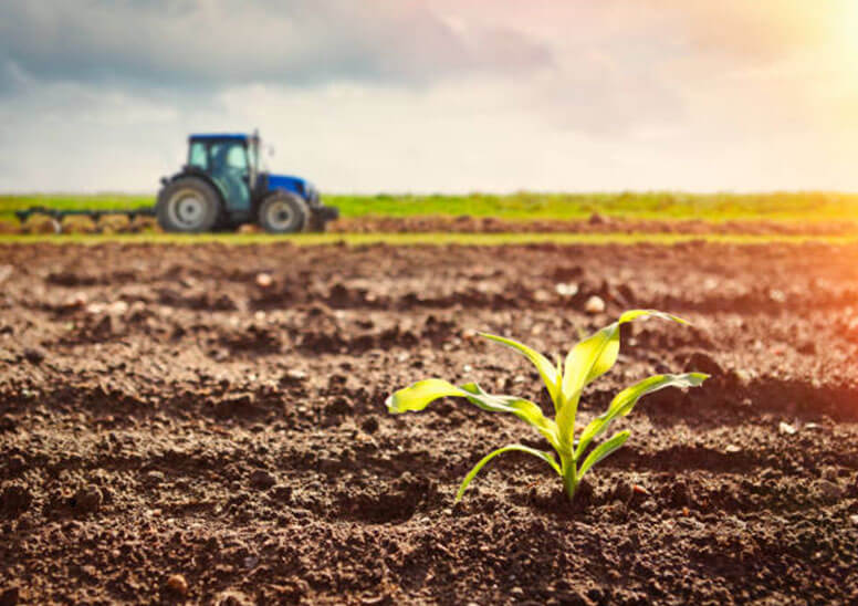 Water Soluble Fertilizers Market Size, Share, Growth Analysis 2021-2027